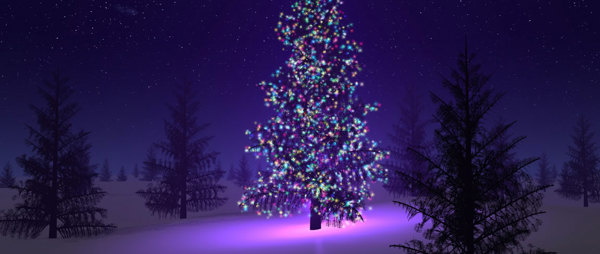 Image of a Christmas Tree in a purple haze